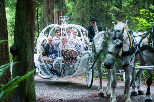 נצאה אל היער, ולא נחפש חתן